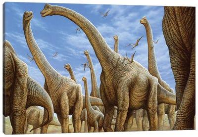 Brachiosaurus Herd On The Move Canvas Art Print