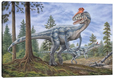 Cryolophosaurus Dinosaurs Hunting For Prey In A Prehistoric Environment Canvas Art Print