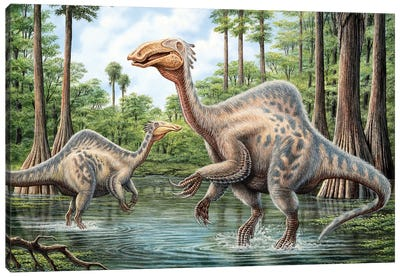 Two Deinocheirus Grazing The Inhabited Wetlands Of The Cretaceous Period Canvas Art Print