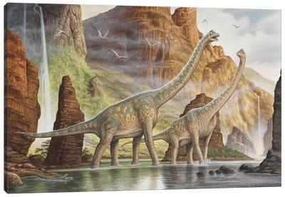 A Pair Of Giraffatitan Walking In A Valley River Canvas Art Print