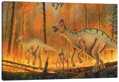 Hypacrosaurus Dinosaurs Flee A Burning Forest Canvas Art Print