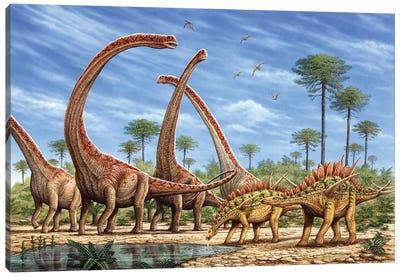 Mamenchisaurus Herd And A Pair Of Huayangosaurus Roaming By A Stream Canvas Art Print
