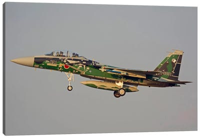 F-15DJ Eagle Of The Japan Air Self Defense Force's Hiko Kyodatai Aggressor Squadron III Canvas Art Print