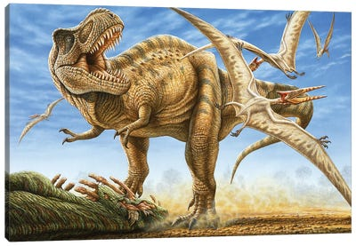T-rex Tries To Fend Off Scavenging Pterosaurs From His Recent Kill Canvas Art Print