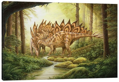 A Pair Of Stegosaurus Dinosaurs In A Prehistoric Forest Canvas Art Print