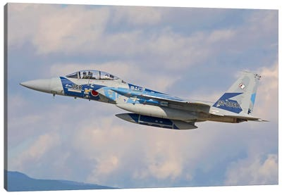 F-15DJ Eagle Of The Japan Air Self-Defense Force Canvas Art Print