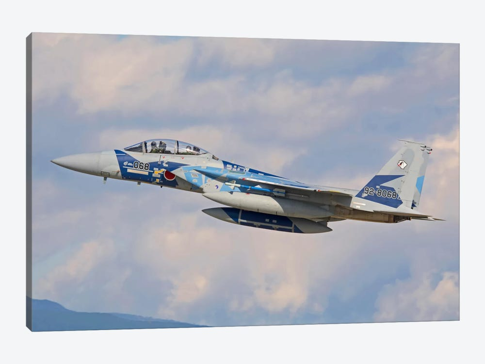 F-15DJ Eagle Of The Japan Air Self-Defense Force by Phil Wallick 1-piece Art Print