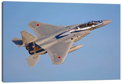 F-15J Eagle Of The Japan Air Self-Defense Force Canvas Art Print