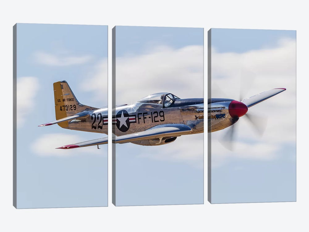 A P-51 Mustang Flies By At Vacaville, California by Rob Edgcumbe 3-piece Art Print