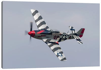 A P-51 Mustang Flies By At Willow Run, Michigan Canvas Art Print