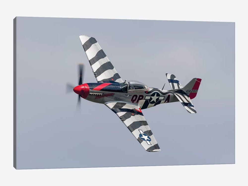 A P-51 Mustang Flies By At Willow Run, Michigan by Rob Edgcumbe 1-piece Canvas Art
