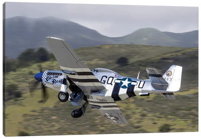 A P-51 Mustang Takes Off From Half Moon Bay, California Canvas Art Print