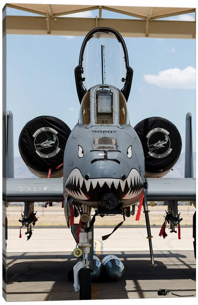 A US Air Force A-10 Thunderbolt II Parked At Davis Monthan Air Force Base Canvas Art Print