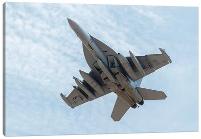 A US Navy E/A-18G Growler Takes Off From Nellis Air Force Base, Nevada Canvas Art Print