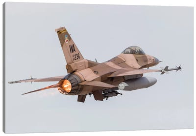 An Aggressor F-16C Fighting Falcon Of The US Air Force Canvas Art Print
