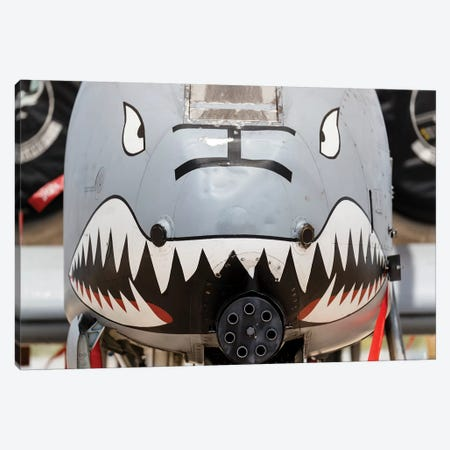 Close-Up Of The GAU-8 Avenger Gun On An A-10 Thunderbolt II Canvas Print #TRK460} by Rob Edgcumbe Art Print