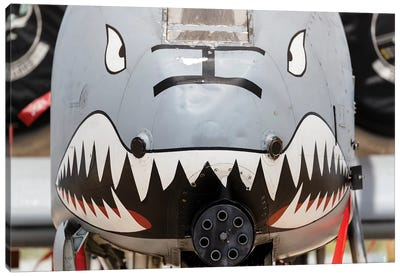 Close-Up Of The GAU-8 Avenger Gun On An A-10 Thunderbolt II Canvas Art Print