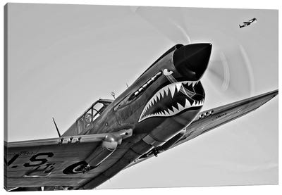 A Curtiss P-40E Warhawk In Flight Near Chino, California I Canvas Art Print