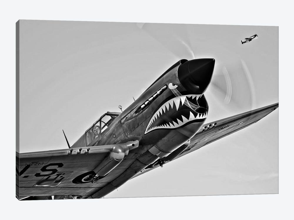 A Curtiss P-40E Warhawk In Flight Near Chino, California I by Scott Germain 1-piece Canvas Print