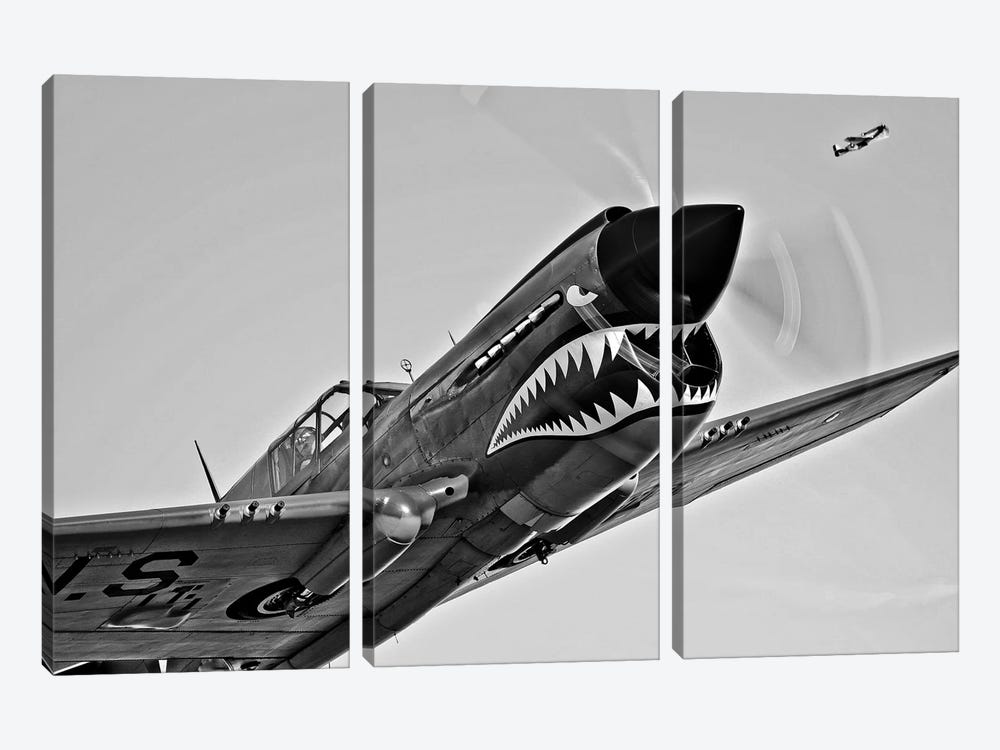 A Curtiss P-40E Warhawk In Flight Near Chino, California I by Scott Germain 3-piece Canvas Print