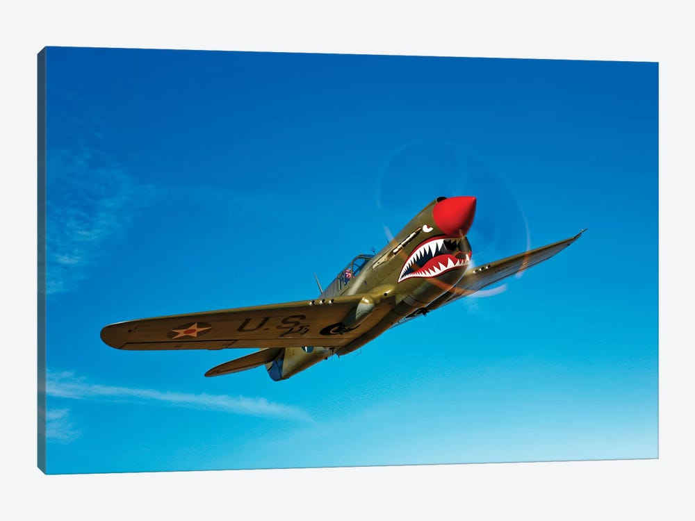 A P-40E Warhawk In Flight I by Scott Germain 1-piece Art Print