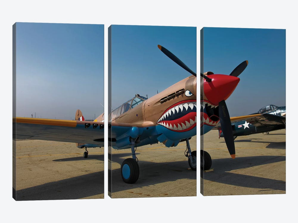 Nose Art On A Curtiss P-40E Warhawk by Scott Germain 3-piece Canvas Wall Art