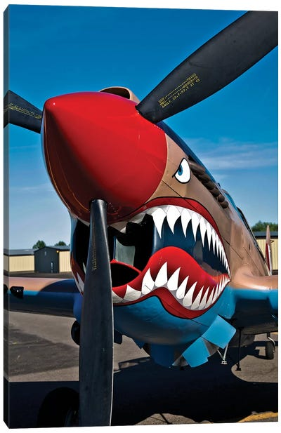 Nose Art On A Curtiss P-40E Warhawk II Canvas Art Print