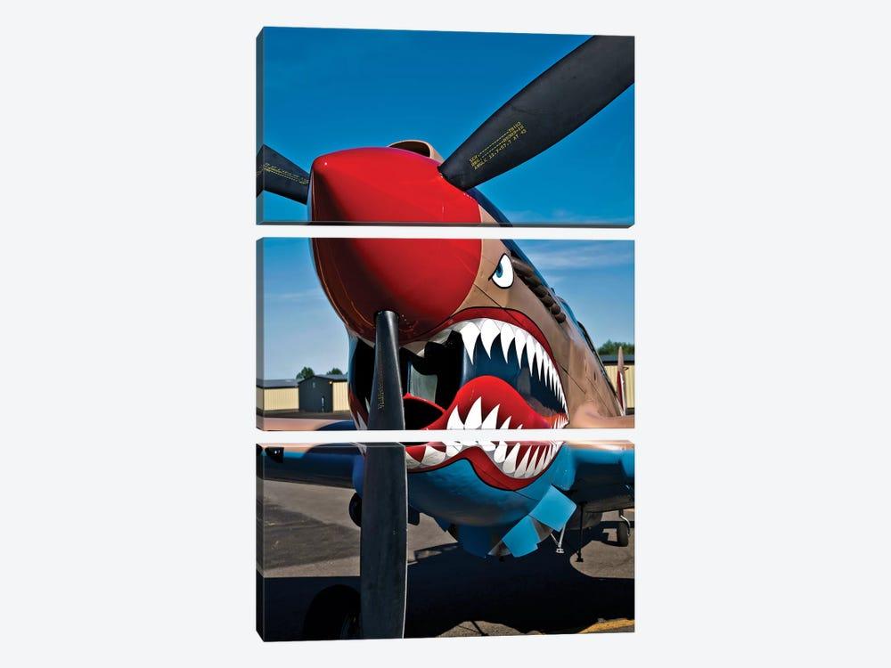 Nose Art On A Curtiss P-40E Warhawk II by Scott Germain 3-piece Canvas Artwork