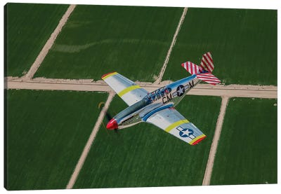 TP-51C Mustang In Flight Over Arizona Canvas Art Print
