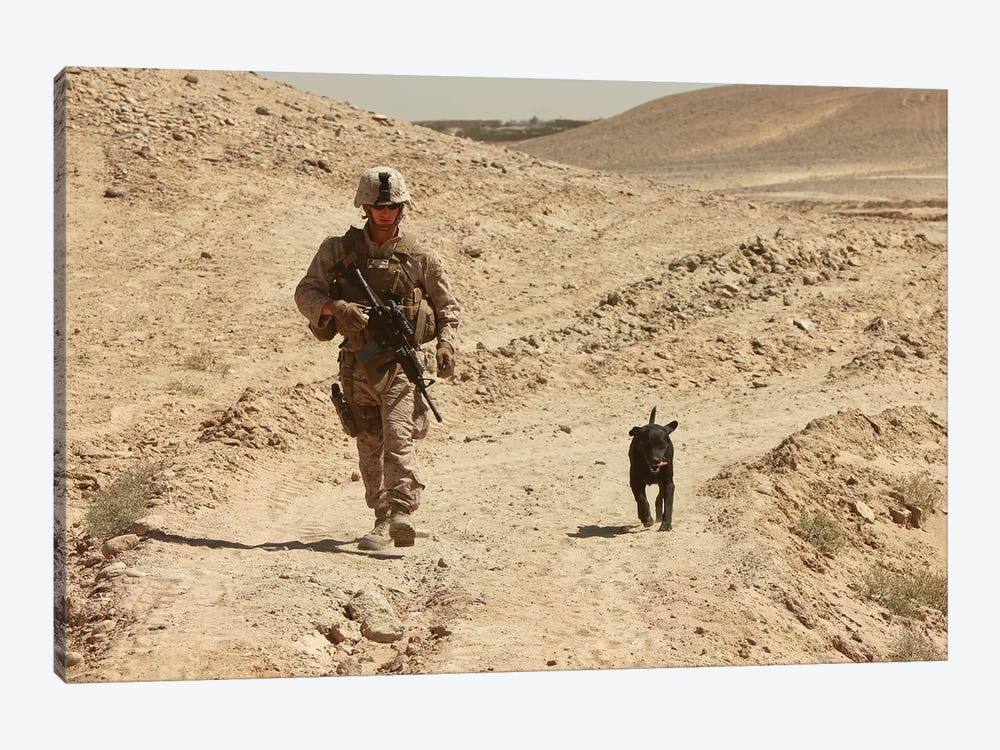 A Dog Handler Walks With An Explosives Detection Dog While On Patrol by Stocktrek Images 1-piece Canvas Print