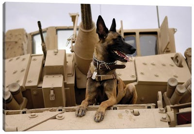 A Military Working Dog Sits On A US Army M2A3 Bradley Fighting Vehicle Canvas Art Print