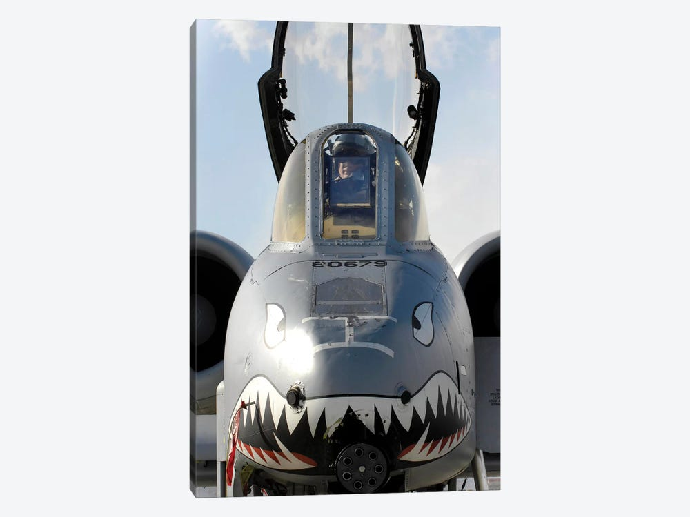 A Pilot Prepares To Dismount His A-10C Thunderbolt II by Stocktrek Images 1-piece Art Print