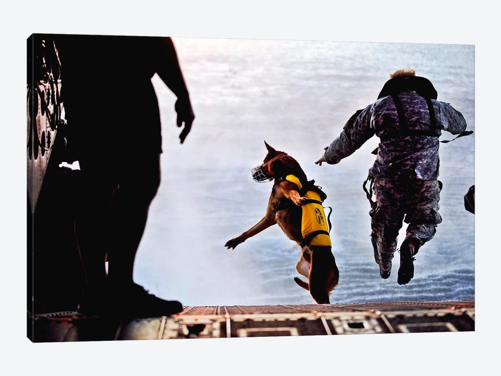 A US Soldier And His Military Working Dog Jump Off The Ramp Of A CH-47 Chinook by Stocktrek Images 1-piece Art Print