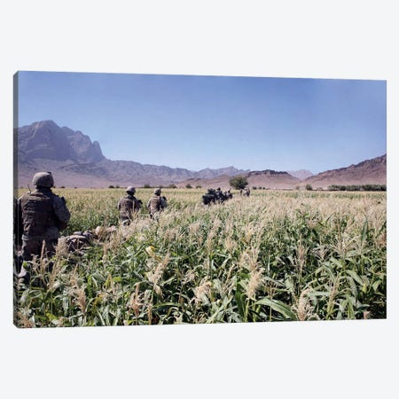Soldiers Walking Through A Wheat Field In Afghanistan Canvas Print #TRK926} by Stocktrek Images Canvas Print