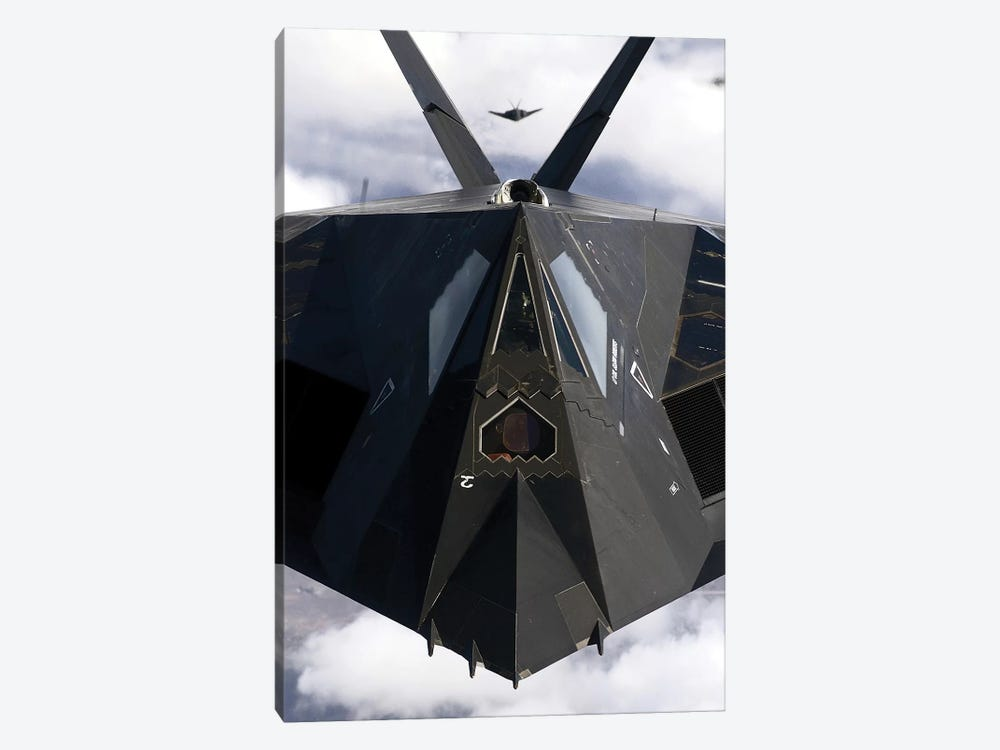 The F-117A Nighthawk by Stocktrek Images 1-piece Art Print