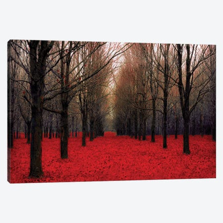 Fairy Tale Autumn Canvas Print #TRT10} by Tracey Telik Canvas Wall Art