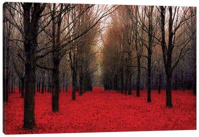 Fairy Tale Autumn Canvas Art Print