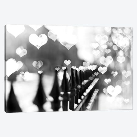 Fence Hearts Canvas Print #TRT11} by Tracey Telik Canvas Art