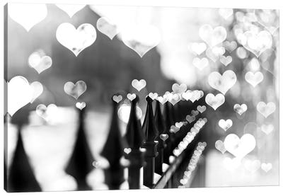 Fence Hearts Canvas Art Print