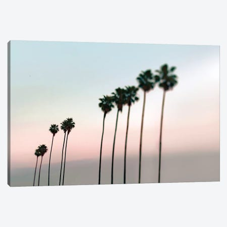 Rosey Palms Canvas Print #TRT17} by Tracey Telik Canvas Print