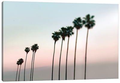 Rosey Palms Canvas Art Print
