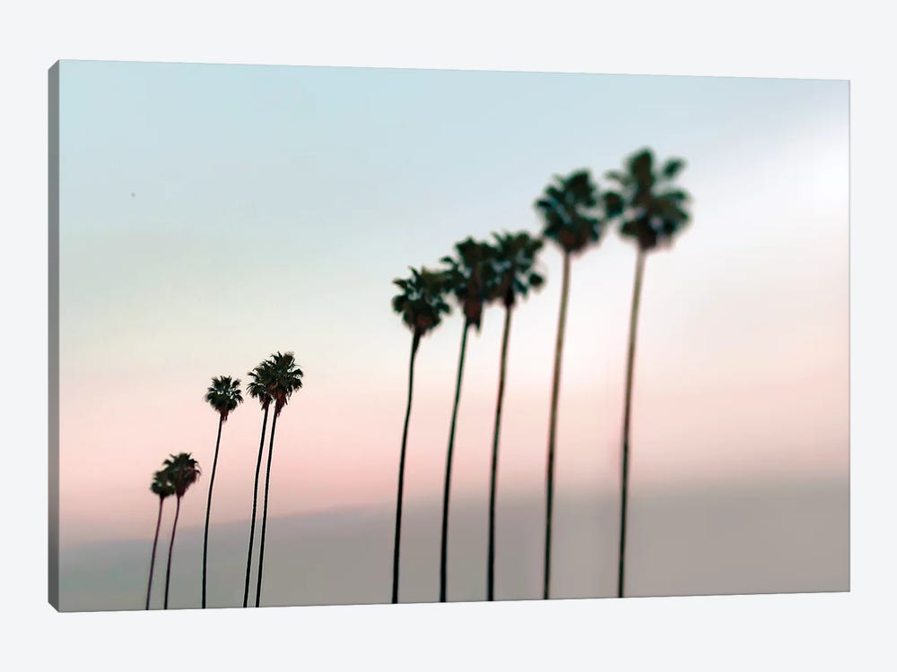 Rosey Palms by Tracey Telik 1-piece Canvas Artwork