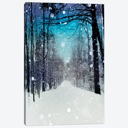 Snowhere Canvas Print #TRT19} by Tracey Telik Canvas Artwork