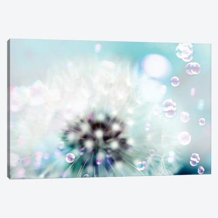 Teal Dandelion 3-Piece Canvas #TRT22} by Tracey Telik Art Print