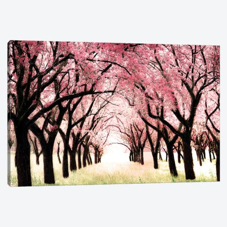 Wonderland Canvas Print #TRT24} by Tracey Telik Canvas Artwork
