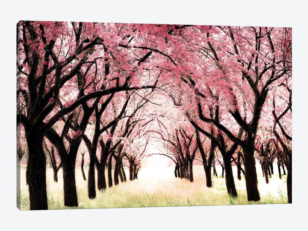 Wonderland by Tracey Telik 1-piece Canvas Artwork