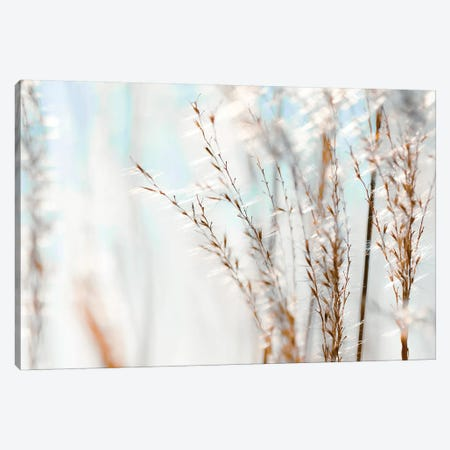 Blue Grasses Canvas Print #TRT6} by Tracey Telik Art Print