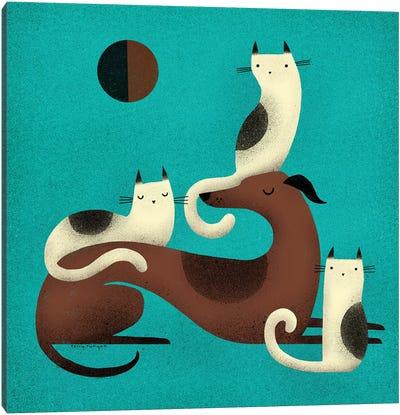Greyhound Perch Canvas Art Print