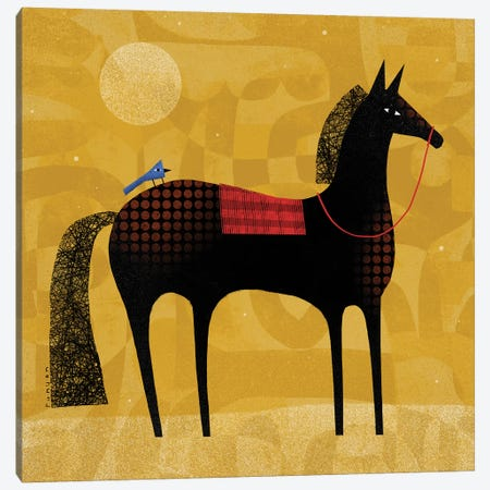 Black Horse Blue Bird Canvas Print #TRU7} by Terry Runyan Canvas Artwork