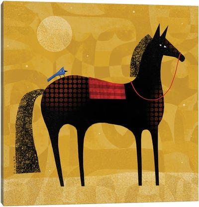 Black Horse Blue Bird Canvas Art Print